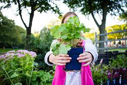 Bewoners ruilen 13.700 tegels om voor planten